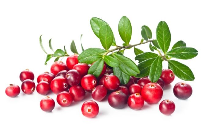 Cranberries Offers You A Package Of 20 Magical Health Benefits