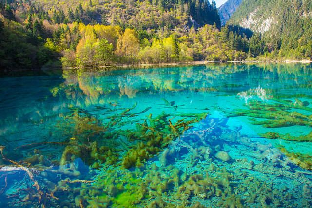 Explore The 15 Most Colorful Lakes In The World